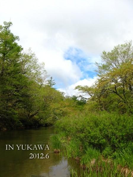 yukawa2012a.JPG